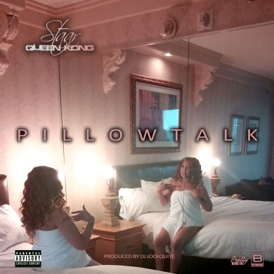 pillowtalk promo.jpg