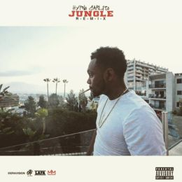 jungle-remix-260-260-1478639160